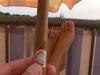 smoking-now-aug08-08