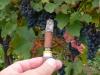 smoking-now-oct08-08
