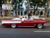 cuban-gallery-1-39