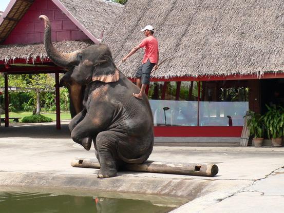 bangkok 0709 retirement 31