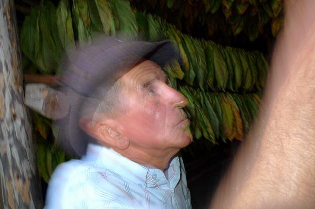 cuba 2011 vuelta abajo - trinidad 24